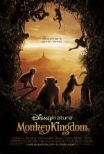 Maymun Krallığı (2015) afişi