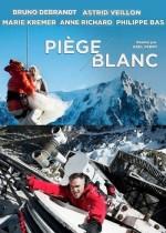 Mont Blanc'da Panik