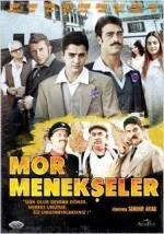 Mor Menekşeler (2011) afişi