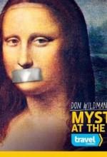 Mysteries at the Museum Sezon 2 (2011) afişi