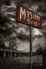 Mystery Spot (2020) afişi