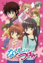 Naisho No Tsubomi (2008) afişi