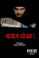 Neden Silah? (2010) afişi