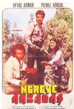 Nereye Arkadaş (1976) afişi