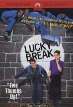 Neşeli Günler (2001) afişi