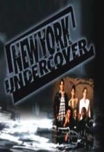 New York Undercover (1994) afişi