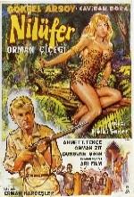 Nilüfer Orman Çiçeği (1960) afişi
