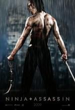Ninja'nın İntikamı (2009) afişi