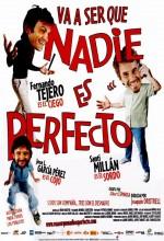 Nobody ıs Perfect (2006) afişi