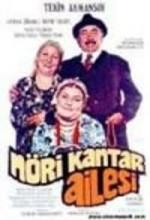 Nöri Gantar Ailesi (1975) afişi