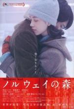 İmkansızın Şarkısı (2010) afişi