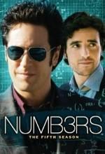 Numb3rs (2008) afişi