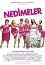 Nedimeler (2011) afişi