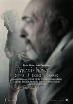 Nergis Hanım (2014) afişi