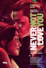 Never Not Love You (2018) afişi