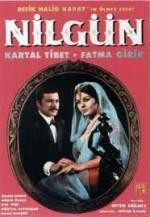 Nilgün (1968) afişi
