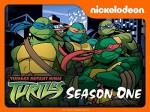 Ninja Kaplumbağalar Sezon 1 (2003) afişi