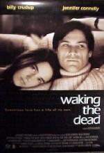 Ölüyü Uyandırmak (2000) afişi