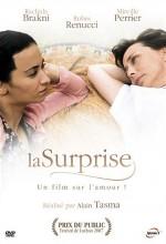 La surprise (2007) afişi