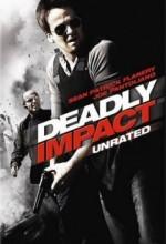 Ölümcül Darbe (2009) afişi