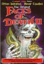 Ölümle Yüzyüze Gelmek 2 (1981) afişi