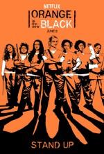 Orange Is the New Black Sezon 5 (2017) afişi
