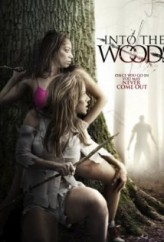 Ormanın İçinde (2012) afişi