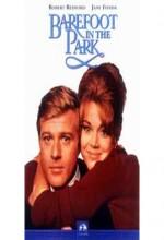 Parkta Çıplak Ayak (1967) afişi