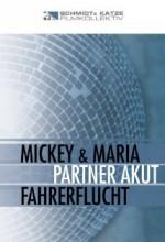 Partner Akut (2001) afişi