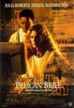 Pelikan Dosyası (1993) afişi
