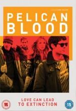 Pelikan Kanı (2010) afişi