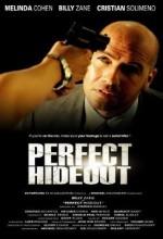 Mükemmel Kaçış (2008) afişi