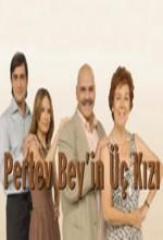 Pertev Bey'in Üç Kızı (2006) afişi