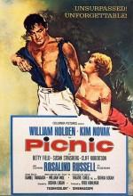 Piknik (1955) afişi