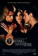 Playing With Fire (ı) (2008) afişi