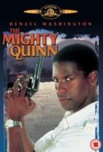 Polis Quinn (1989) afişi