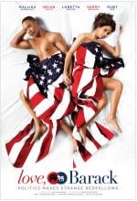 Politics Of Love (2010) afişi