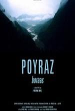 Poyraz (2006) afişi