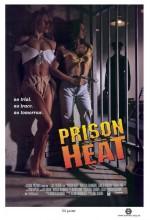 Prison Heat (1993) afişi