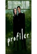 Profiler (1996) afişi