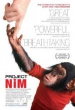 Proje Nim (2011) afişi