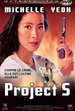 Project S (1993) afişi