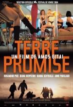 Kayıp Umutlar (2004) afişi