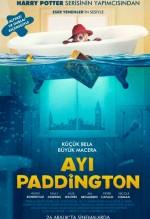 Ayı Paddington