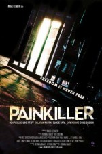 Painkiller (2013) afişi