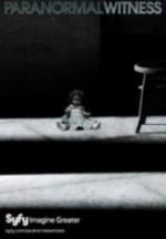 Paranormal Witness Sezon 1 (2013) afişi