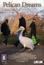 Pelican Dreams (2014) afişi