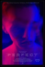 Perfect (2018) afişi