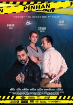 Pinhan (2016) afişi