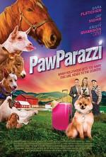 PupParazzi (2018) afişi
